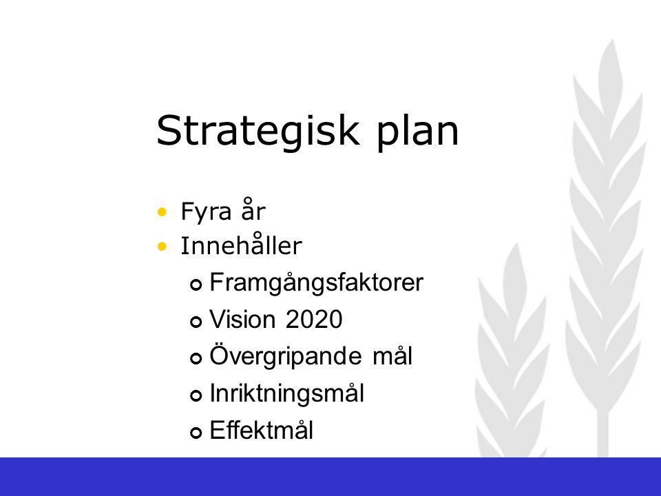 Strategisk plan Fyra år Innehåller Framgångsfaktorer Vision 2020 Övergripande mål Inriktningsmål Effektmål