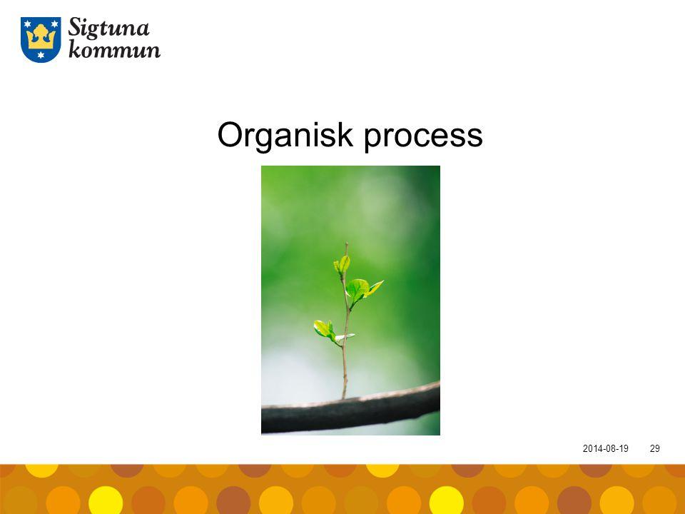 2014-08-1929 Organisk process