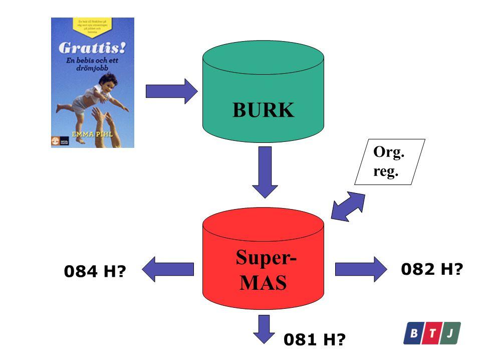 BURK Super- MAS 082 H? 081 H? 084 H? Org. reg.