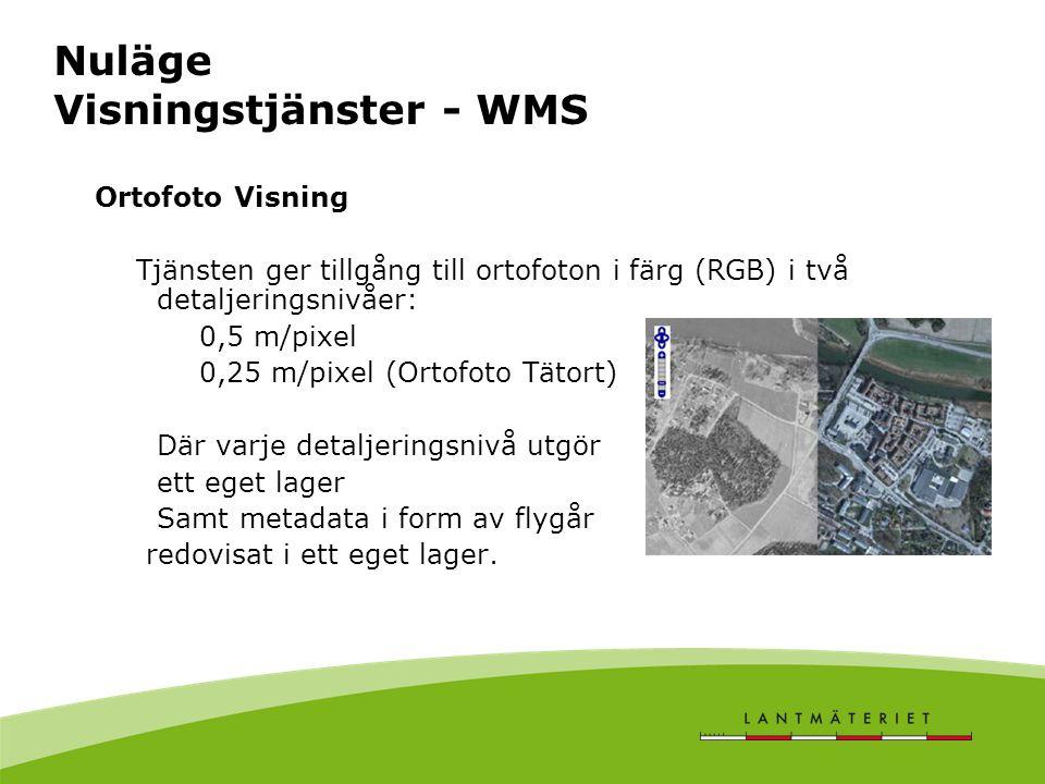 Nuläge Visningstjänster - WMS Ortofoto Visning Tjänsten ger tillgång till ortofoton i färg (RGB) i två detaljeringsnivåer: 0,5 m/pixel 0,25 m/pixel (Ortofoto Tätort) Där varje detaljeringsnivå utgör ett eget lager Samt metadata i form av flygår redovisat i ett eget lager.