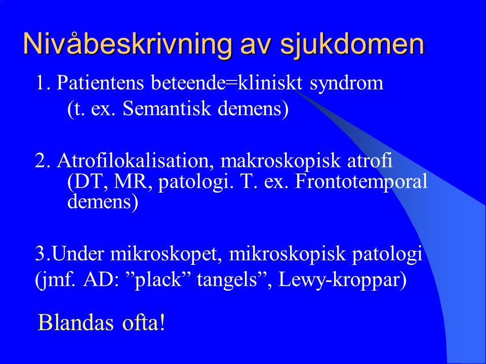Nivåbeskrivning av sjukdomen 1.Patientens beteende=kliniskt syndrom (t.