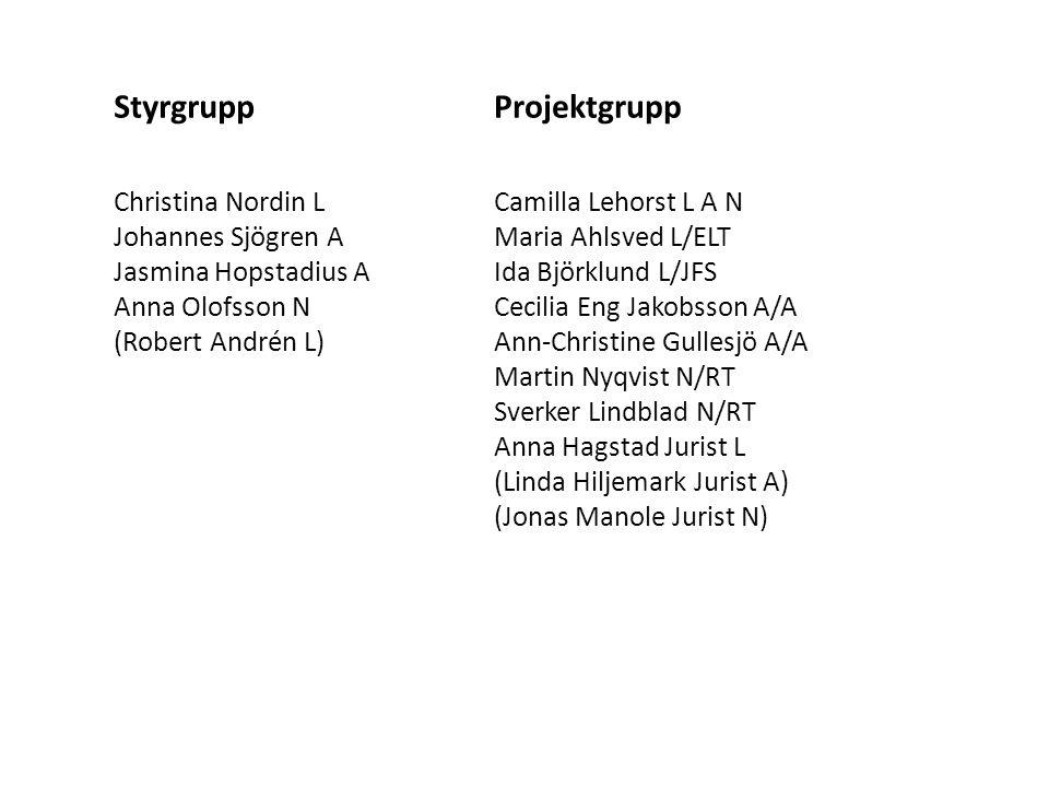 Styrgrupp Christina Nordin L Johannes Sjögren A Jasmina Hopstadius A Anna Olofsson N (Robert Andrén L) Projektgrupp Camilla Lehorst L A N Maria Ahlsve