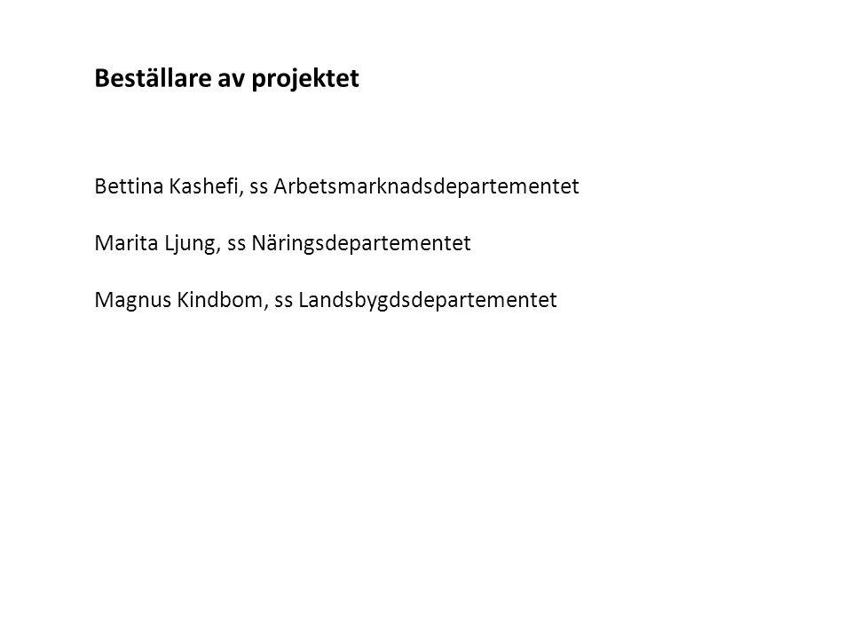 Beställare av projektet Bettina Kashefi, ss Arbetsmarknadsdepartementet Marita Ljung, ss Näringsdepartementet Magnus Kindbom, ss Landsbygdsdepartement