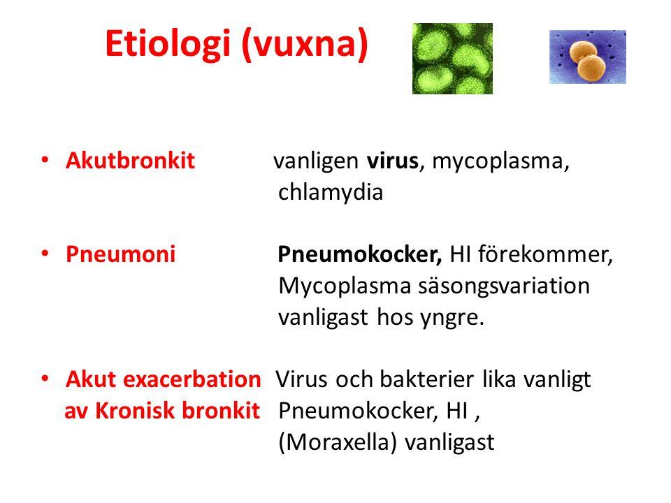 Etiologi (vuxna) Akutbronkit vanligen virus, mycoplasma, chlamydia Pneumoni Pneumokocker, HI förekommer, Mycoplasma säsongsvariation vanligast hos yng