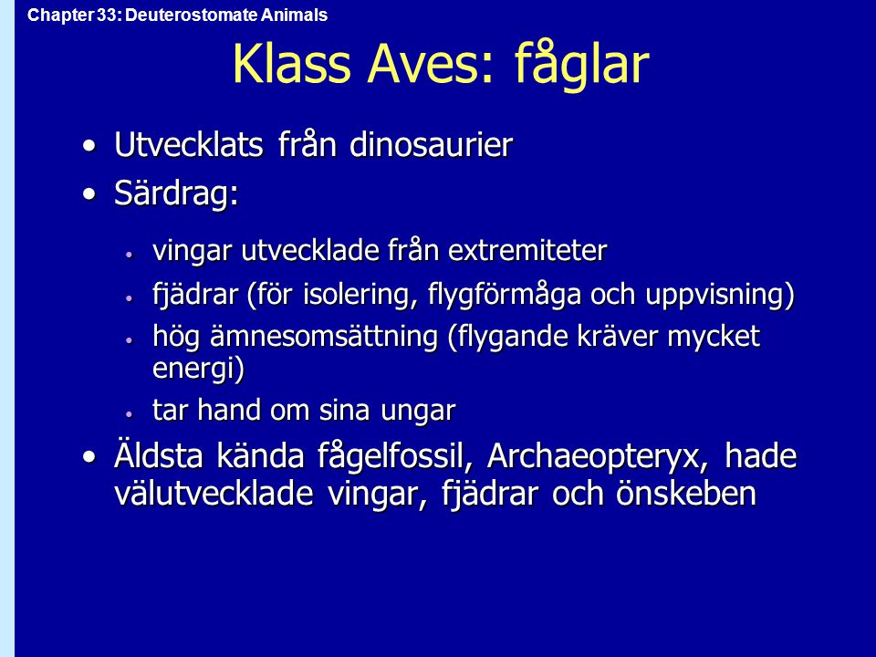 Chapter 33: Deuterostomate Animals Klass Aves: fåglar Utvecklats från dinosaurierUtvecklats från dinosaurier Särdrag:Särdrag: vingar utvecklade från e