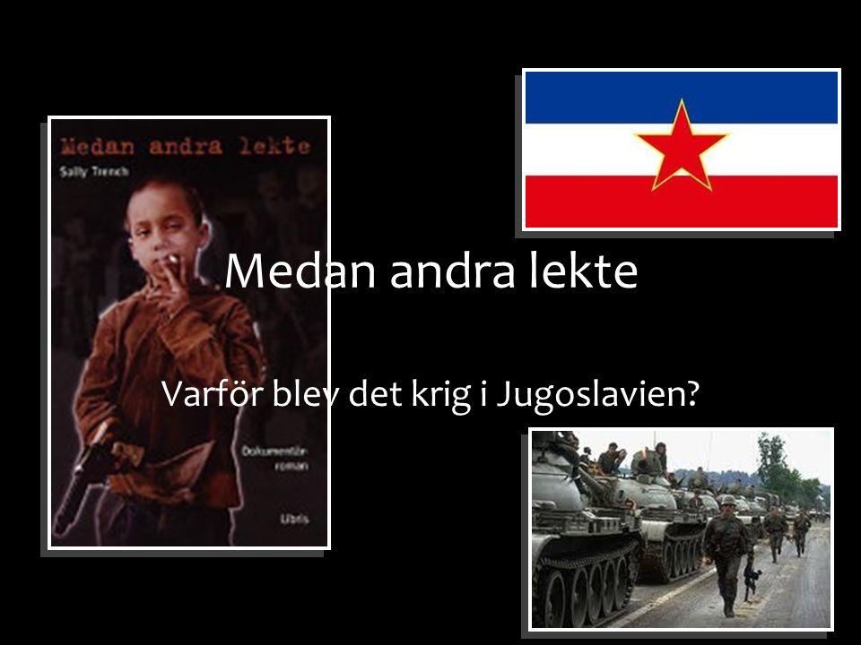 Medan andra lekte Varför blev det krig i Jugoslavien?