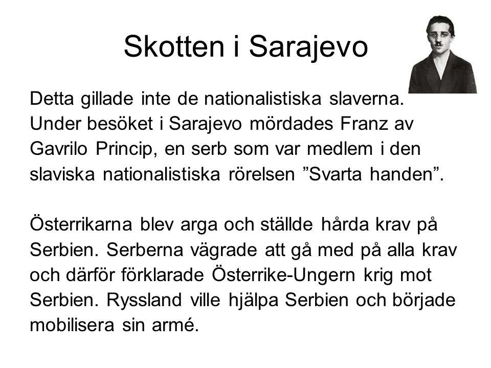 Skotten i Sarajevo Detta gillade inte de nationalistiska slaverna.
