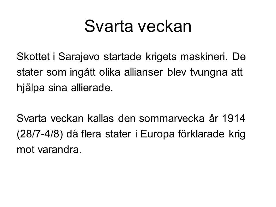 Svarta veckan Skottet i Sarajevo startade krigets maskineri.