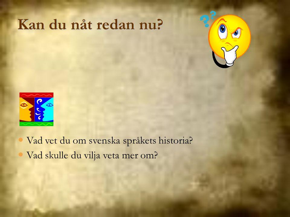 Vad vet du om svenska språkets historia? Vad skulle du vilja veta mer om? Kan du nåt redan nu?
