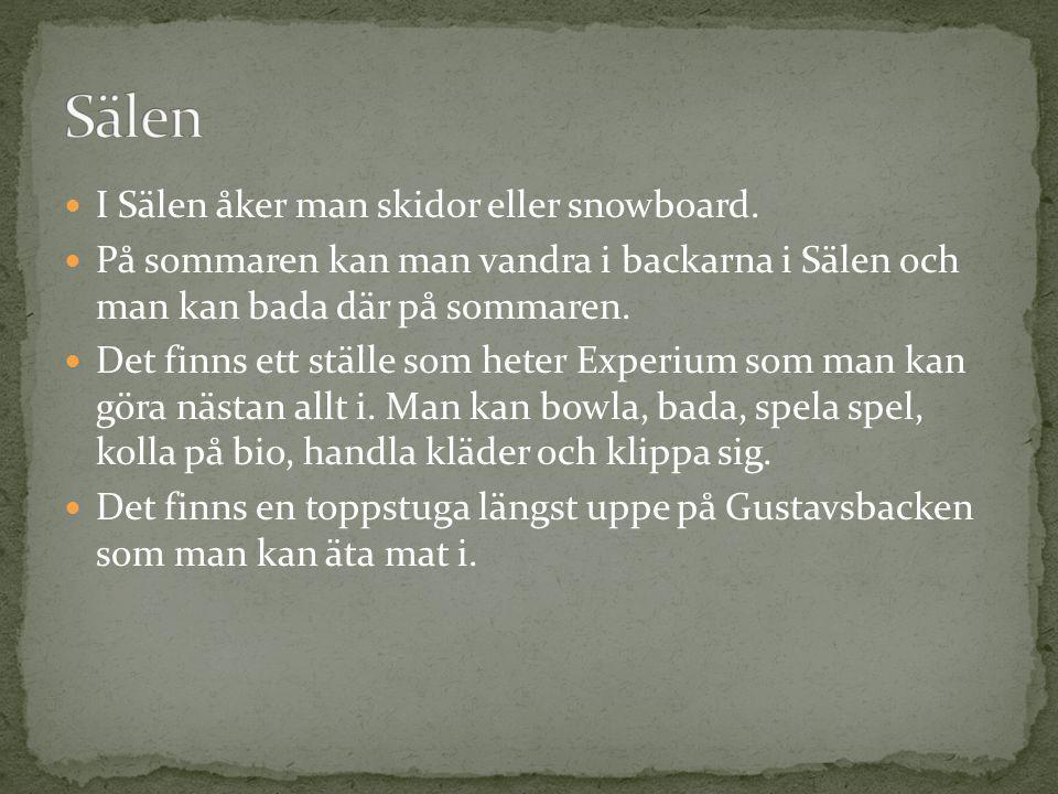 I Sälen åker man skidor eller snowboard. På sommaren kan man vandra i backarna i Sälen och man kan bada där på sommaren. Det finns ett ställe som hete