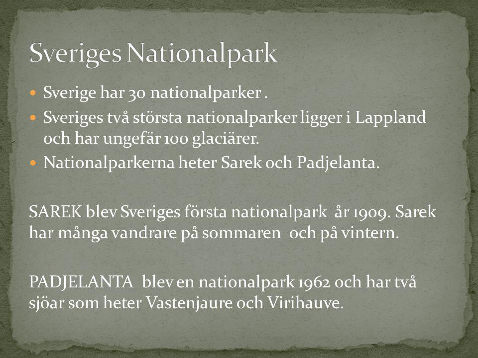 Sverige har 30 nationalparker. Sveriges två största nationalparker ligger i Lappland och har ungefär 100 glaciärer. Nationalparkerna heter Sarek och P