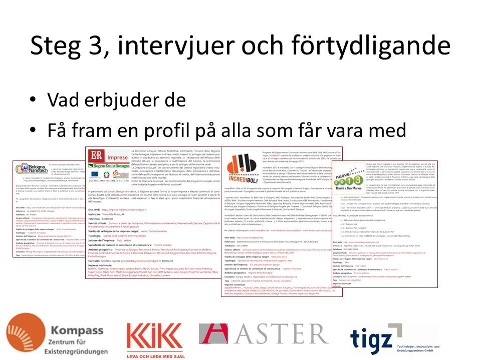 Steg 3, intervjuer och förtydligande Vad erbjuder de Få fram en profil på alla som får vara med