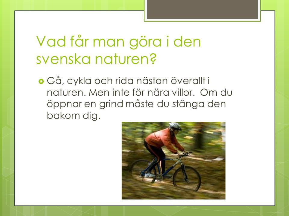 Vad får man göra i den svenska naturen?  Gå, cykla och rida nästan överallt i naturen. Men inte för nära villor. Om du öppnar en grind måste du stäng