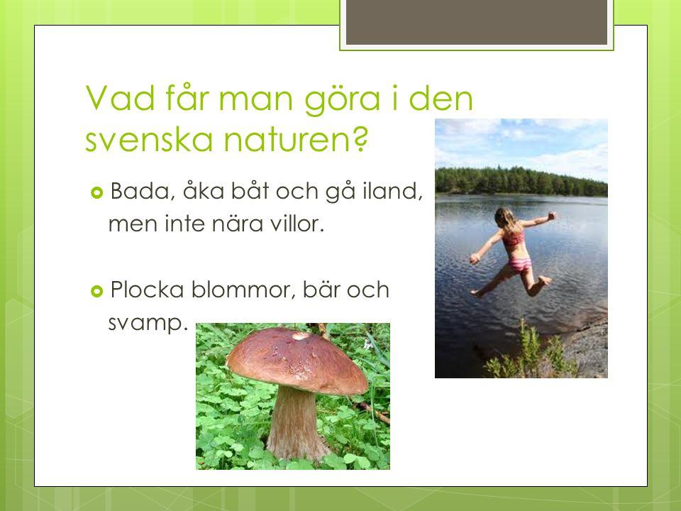 Vad får man göra i den svenska naturen?  Bada, åka båt och gå iland, men inte nära villor.  Plocka blommor, bär och svamp.