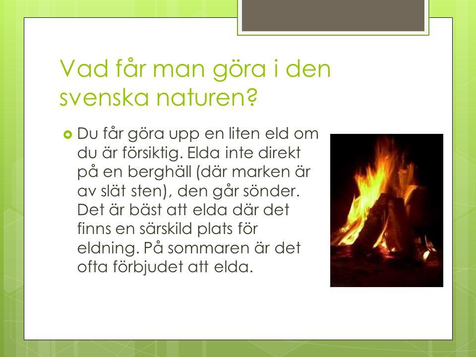 Vad får man göra i den svenska naturen?  Du får göra upp en liten eld om du är försiktig. Elda inte direkt på en berghäll (där marken är av slät sten