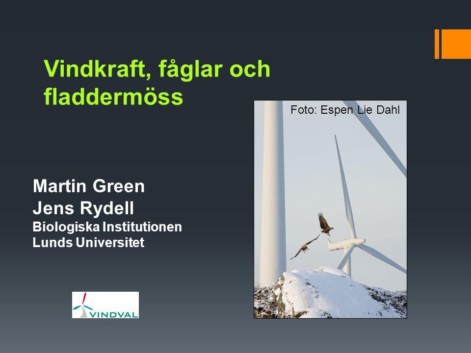 Vindkraft, fåglar och fladdermöss Martin Green Jens Rydell Biologiska Institutionen Lunds Universitet Foto: Espen Lie Dahl