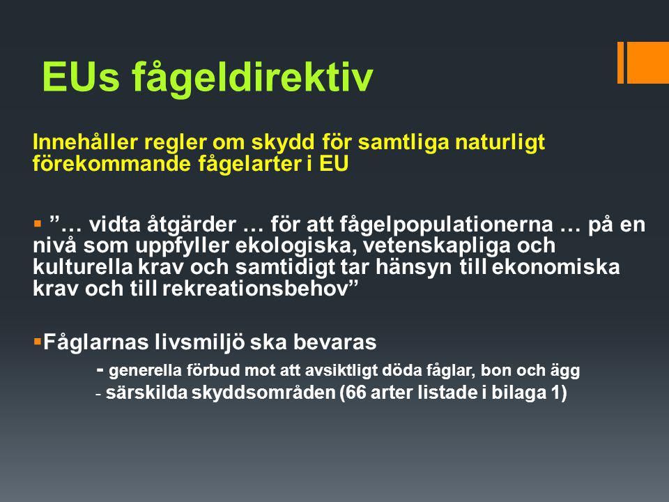 """EUs fågeldirektiv Innehåller regler om skydd för samtliga naturligt förekommande fågelarter i EU  """"… vidta åtgärder … för att fågelpopulationerna … p"""