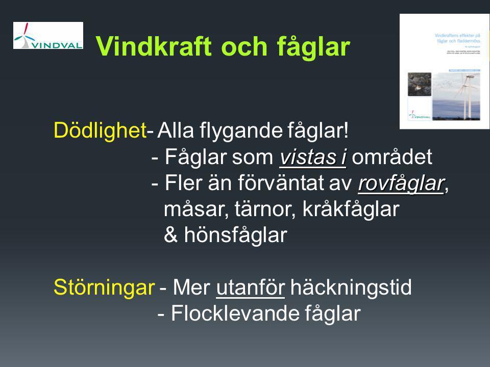 Exemplet Smla Exemplet Smøla  En ö utanför Trondheim i Norge (214 km 2 )  Vindpark (68 verk; 18 km 2 ) uppfördes 2001-2005  Gott om havsörn (50 par; 0,25 par/ km 2 )  Hög dödlighet av havsörn (49 ex t.o.m.