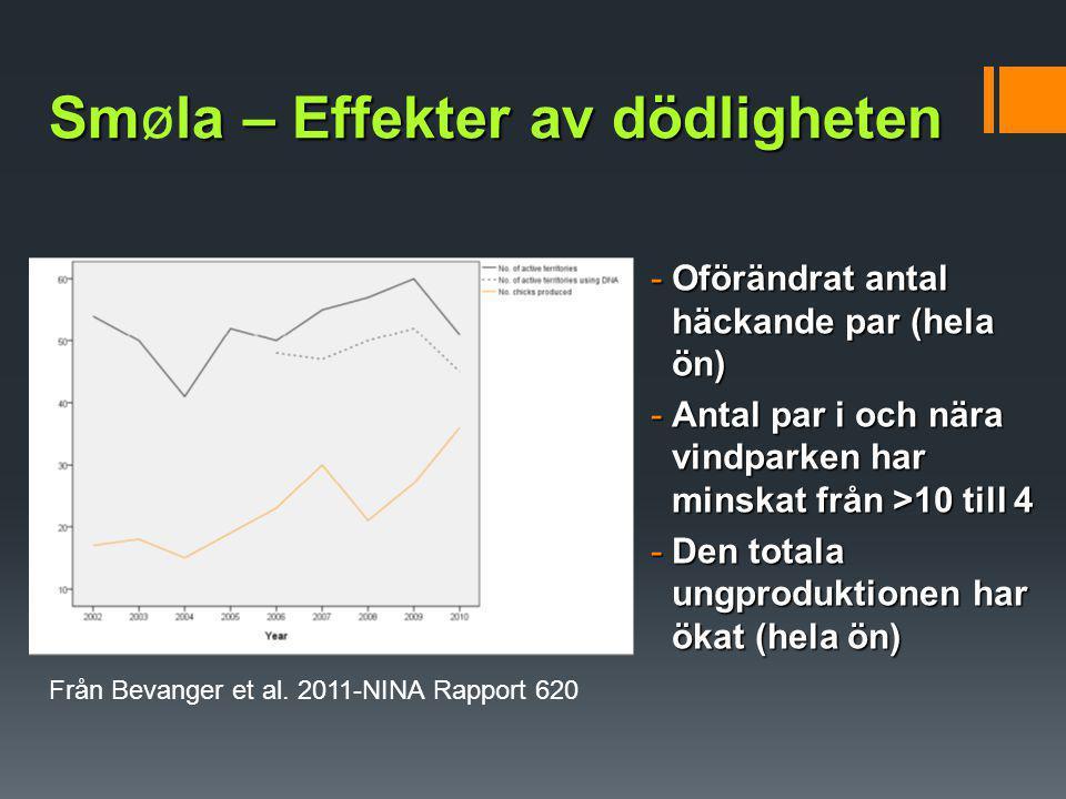 Smla – Effekter av dödligheten Smøla – Effekter av dödligheten -Oförändrat antal häckande par (hela ön) -Antal par i och nära vindparken har minskat f