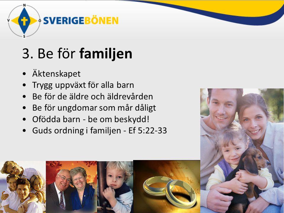 3. Be för familjen Äktenskapet Trygg uppväxt för alla barn Be för de äldre och äldrevården Be för ungdomar som mår dåligt Ofödda barn - be om beskydd!