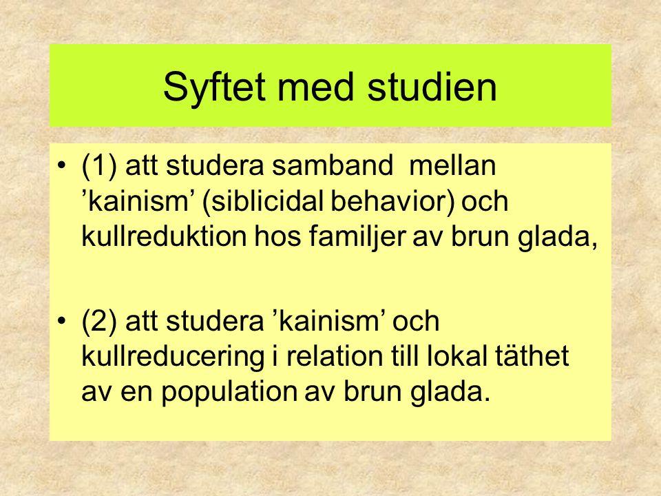Syftet med studien (1) att studera samband mellan 'kainism' (siblicidal behavior) och kullreduktion hos familjer av brun glada, (2) att studera 'kaini