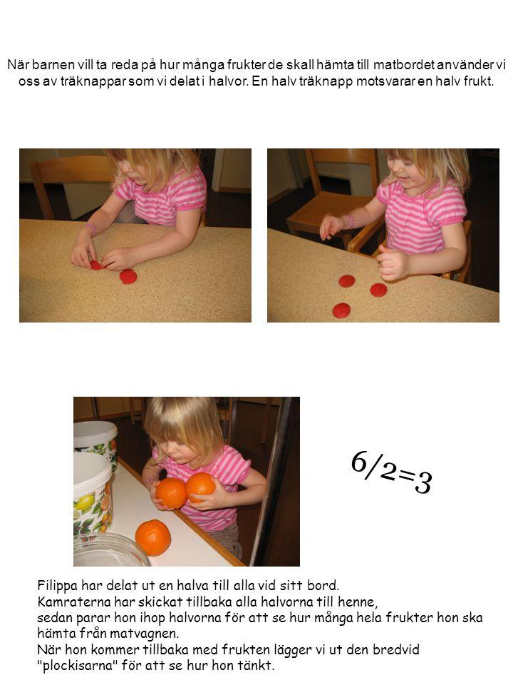 När barnen vill ta reda på hur många frukter de skall hämta till matbordet använder vi oss av träknappar som vi delat i halvor. En halv träknapp motsv