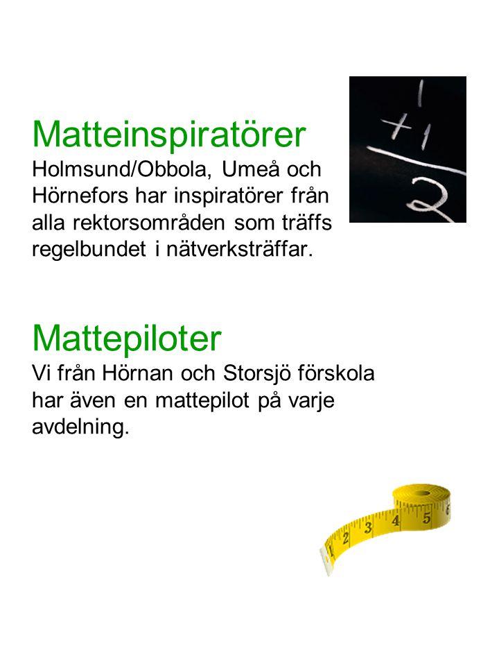 Matteinspiratörer Holmsund/Obbola, Umeå och Hörnefors har inspiratörer från alla rektorsområden som träffs regelbundet i nätverksträffar. Mattepiloter
