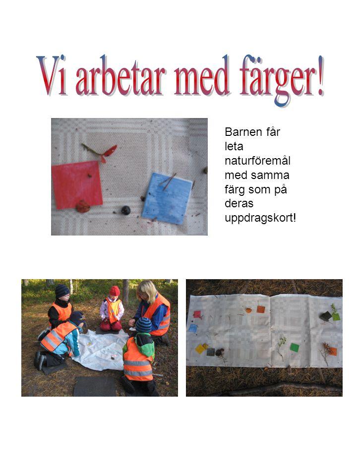 Barnen får leta naturföremål med samma färg som på deras uppdragskort!