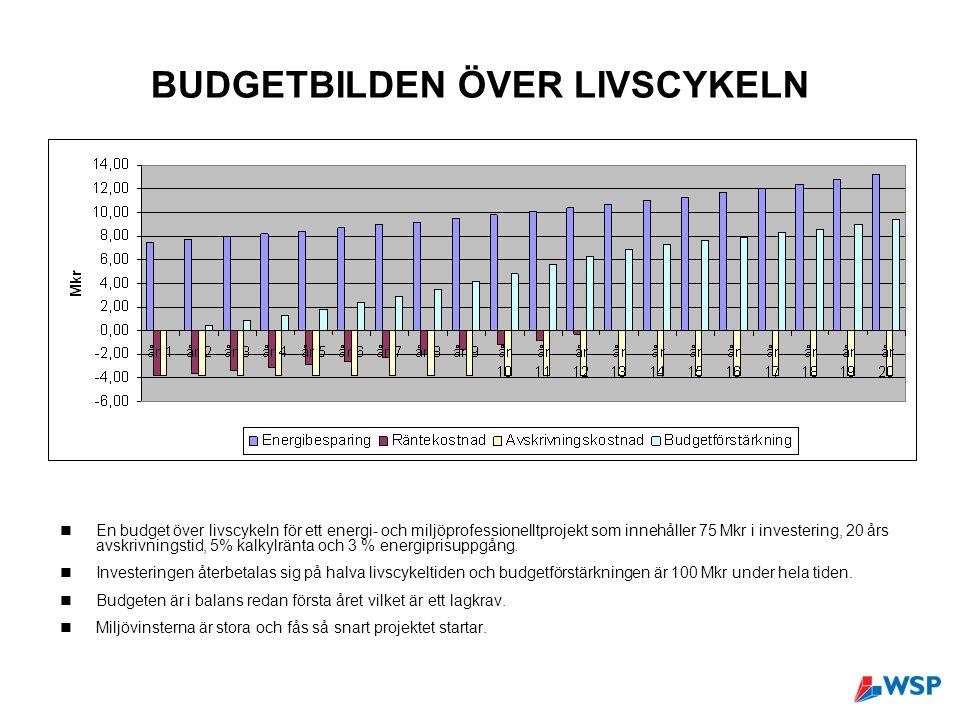 BUDGETBILDEN ÖVER LIVSCYKELN En budget över livscykeln för ett energi- och miljöprofessionelltprojekt som innehåller 75 Mkr i investering, 20 års avskrivningstid, 5% kalkylränta och 3 % energiprisuppgång.