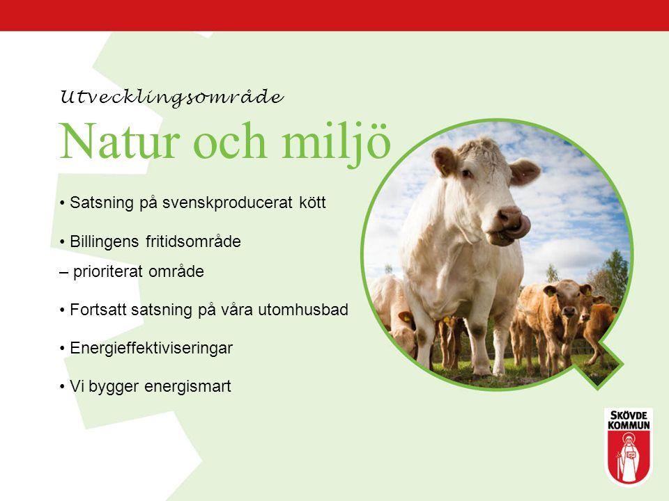 Natur och miljö Satsning på svenskproducerat kött Billingens fritidsområde – prioriterat område Fortsatt satsning på våra utomhusbad Energieffektivise