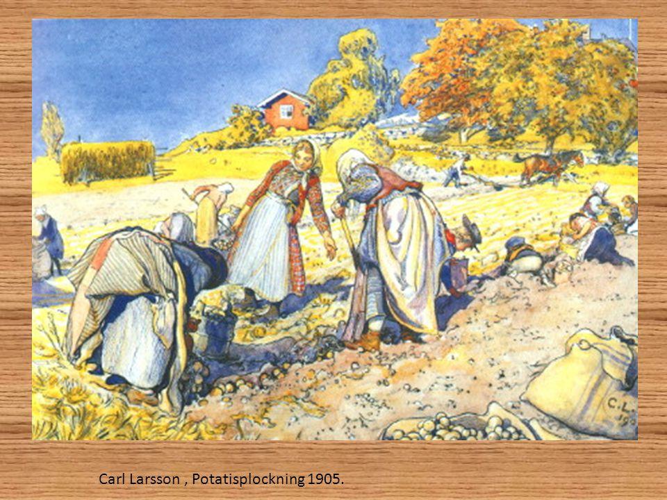 Carl Larsson, Potatisplockning 1905.