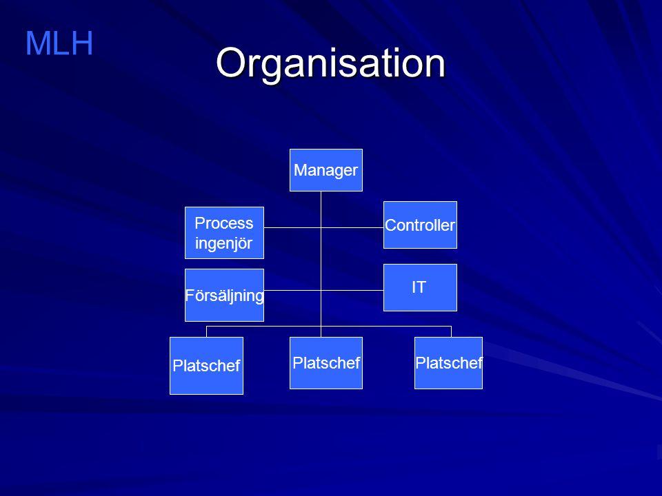Organisation MLH Manager Platschef Controller IT Process ingenjör Försäljning