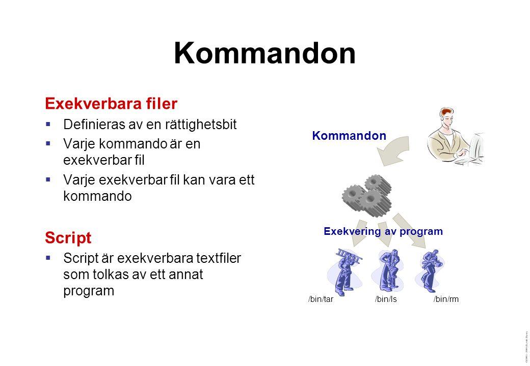 ©2003–2004 David Byers Kommandon Exekverbara filer  Definieras av en rättighetsbit  Varje kommando är en exekverbar fil  Varje exekverbar fil kan vara ett kommando Script  Script är exekverbara textfiler som tolkas av ett annat program Kommandon Exekvering av program /bin/ls/bin/rm/bin/tar