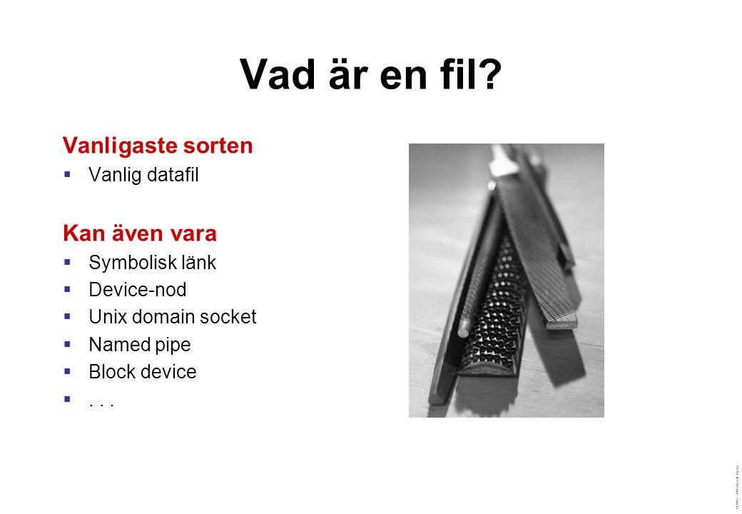 ©2003–2004 David Byers Specialfiler  Special files är gränssnittet för drivrutiner  Två typer: character och block  Hårddiskar, terminaler, slumptalsgenerator mm  Lagras i /dev % cd /dev; ls -l audio fd0 ttyp1 sda sda1 crw-rw---- 1 root audio 14, 4 Jun 16 2001 audio brw-rw---- 1 root floppy 2, 0 Jul 30 2001 fd0 crw-rw---- 1 root tty 3, 1 Jun 16 2001 ttyp1 brw-rw---- 1 root disk 8, 0 Jun 16 2001 /dev/sda brw-rw---- 1 root disk 8, 1 Jun 16 2001 /dev/sda1 % cd /dev; ls -l audio fd0 ttyp1 sda sda1 crw-rw---- 1 root audio 14, 4 Jun 16 2001 audio brw-rw---- 1 root floppy 2, 0 Jul 30 2001 fd0 crw-rw---- 1 root tty 3, 1 Jun 16 2001 ttyp1 brw-rw---- 1 root disk 8, 0 Jun 16 2001 /dev/sda brw-rw---- 1 root disk 8, 1 Jun 16 2001 /dev/sda1