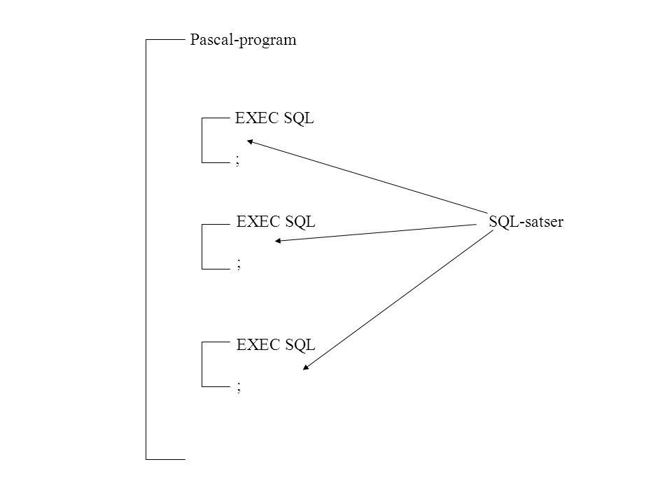 Pascal-program EXEC SQL ; EXEC SQL ; EXEC SQL ; SQL-satser