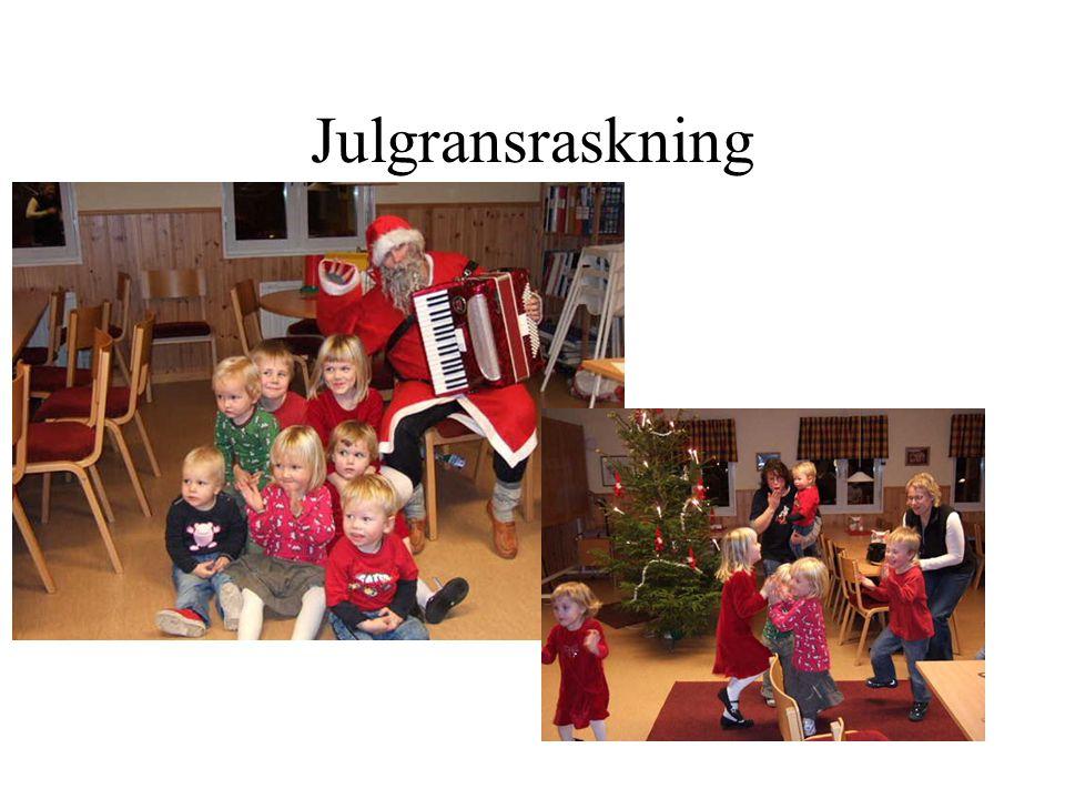 Julgransraskning
