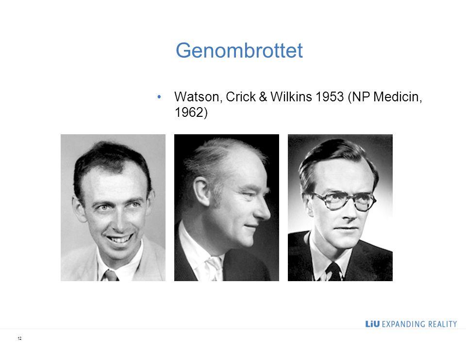 Genombrottet Watson, Crick & Wilkins 1953 (NP Medicin, 1962) 12