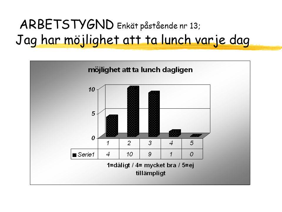 ARBETSTYGND Enkät påstående nr 13; Jag har möjlighet att ta lunch varje dag