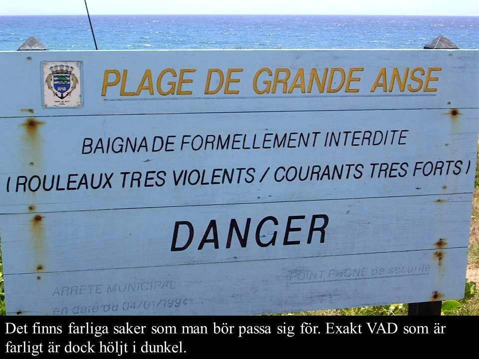 Det finns farliga saker som man bör passa sig för. Exakt VAD som är farligt är dock höljt i dunkel.