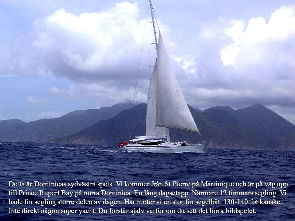 Detta är Dominicas sydvästra spets. Vi kommer från St Pierre på Martinique och är på väg upp till Prince Rupert Bay på norra Dominica. En lång dagseta