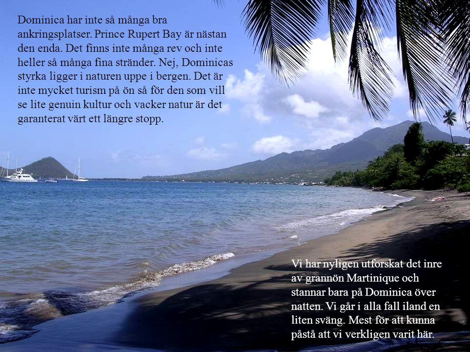 Dominica har inte så många bra ankringsplatser.Prince Rupert Bay är nästan den enda.