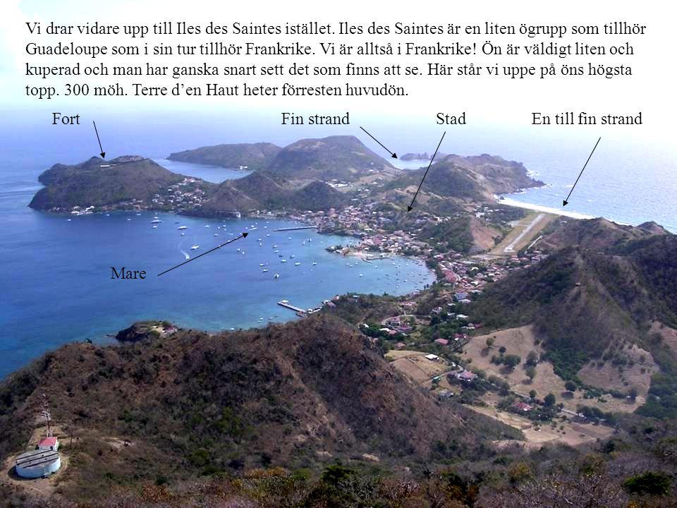 Vi drar vidare upp till Iles des Saintes istället. Iles des Saintes är en liten ögrupp som tillhör Guadeloupe som i sin tur tillhör Frankrike. Vi är a