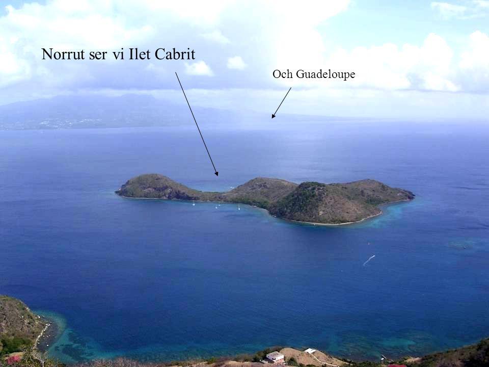 Och Guadeloupe Norrut ser vi Ilet Cabrit