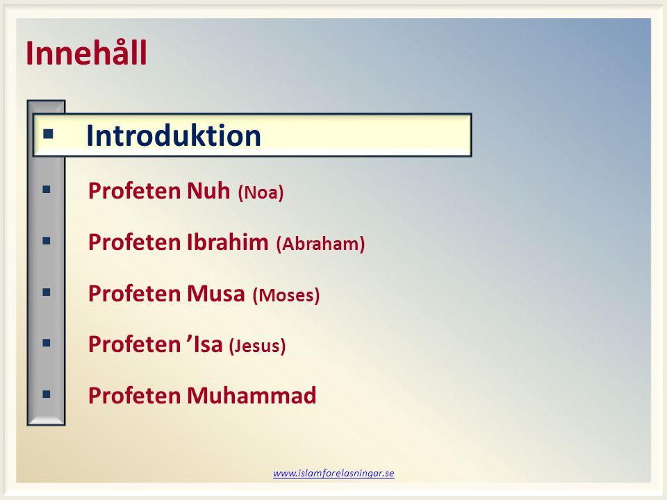 www.islamforelasningar.se  Sändebud från Gud (Allah)  Från Adam till Muhammad  Allihop var fria män  Totalt 124.000 profeter  315 av dessa var budbärare Vad är en profet.