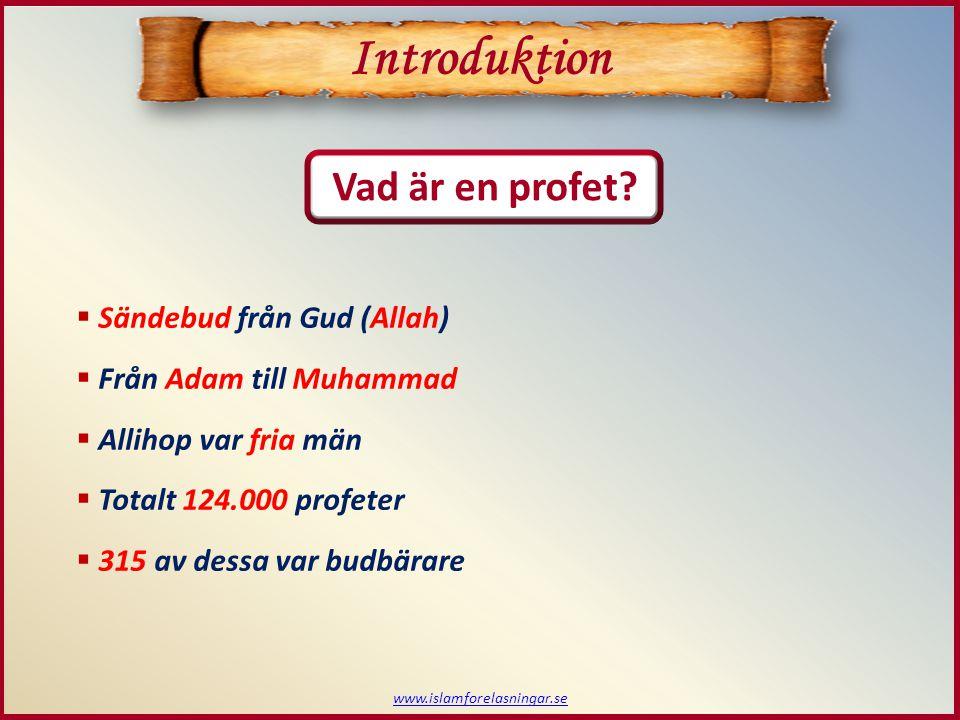 www.islamforelasningar.se  Sändebud från Gud (Allah)  Från Adam till Muhammad  Allihop var fria män  Totalt 124.000 profeter  315 av dessa var bu
