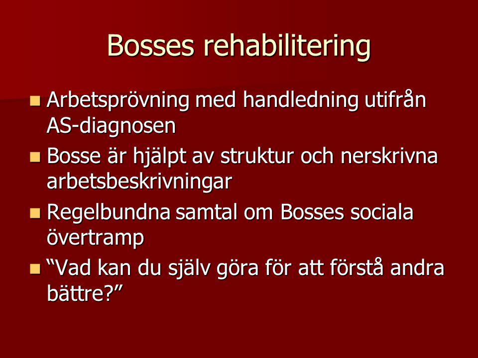 Bosses rehabilitering Arbetsprövning med handledning utifrån AS-diagnosen Arbetsprövning med handledning utifrån AS-diagnosen Bosse är hjälpt av struk