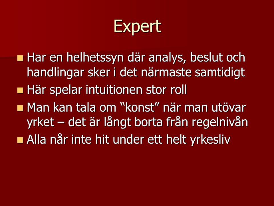 Expert Har en helhetssyn där analys, beslut och handlingar sker i det närmaste samtidigt Har en helhetssyn där analys, beslut och handlingar sker i de