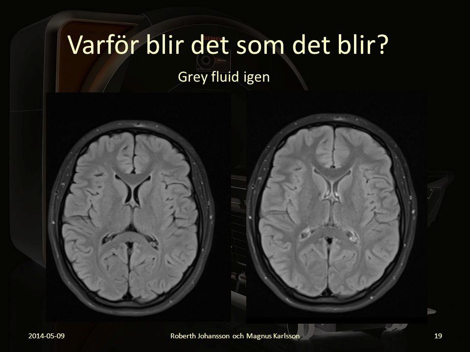Varför blir det som det blir? 2014-05-09Roberth Johansson och Magnus Karlsson19 Grey fluid igen