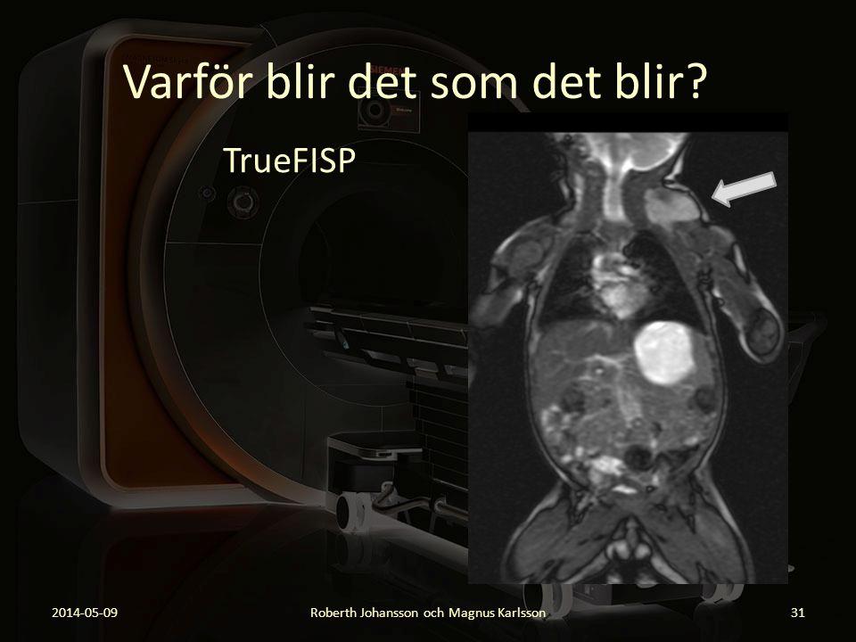 Varför blir det som det blir? TrueFISP 2014-05-09Roberth Johansson och Magnus Karlsson31