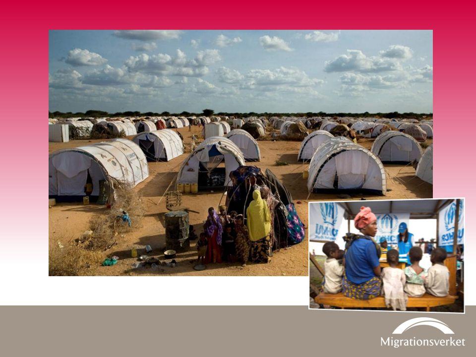 Asyl Totalt antal beviljade ansökningar 2013 – fördelade på beslutsgrund Konventionsflykting 32 % Skyddsbehov 61 % Synnerligen ömmande omständigheter 5 % Övrigt 2 % Totalt 28 998 exkl.